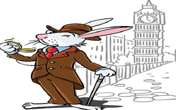 Rabbit Healthcare